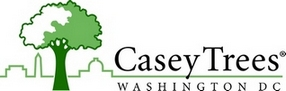 Casey Trees Logo